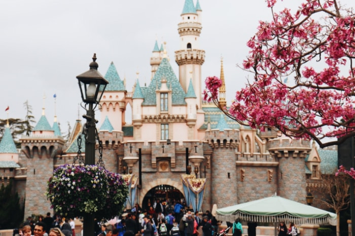 Disneyland castle.