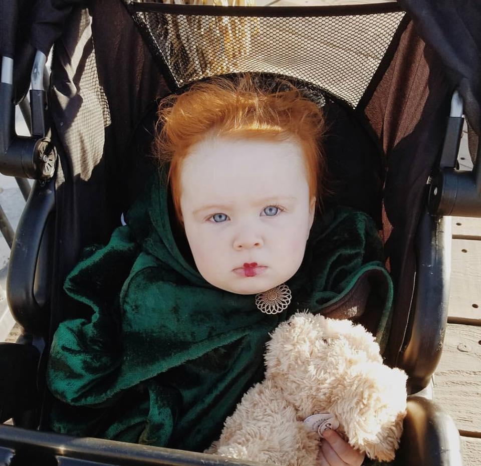 Baby girl dressed up as Winifred from Hocus Pocus sits in stroller and holds stuffed animal.