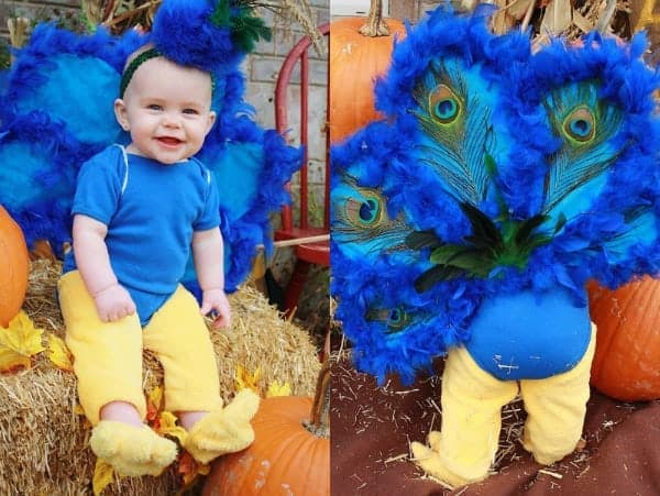 Collage of baby girl in DIY peacock Halloween costume sitting on bale of hay.