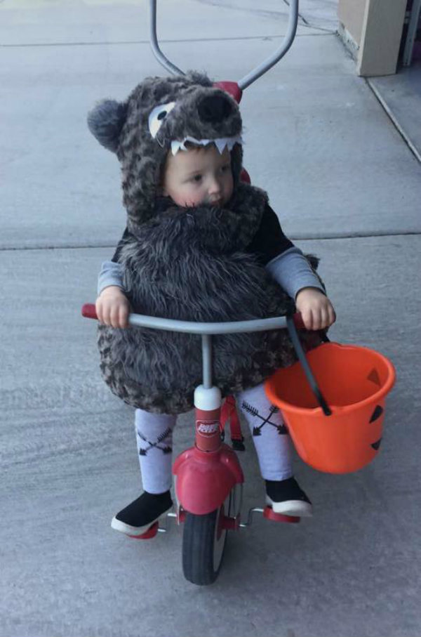 Boy wearing big bad wolf kids Halloween costume sits on tricycle and holds candy bucket.