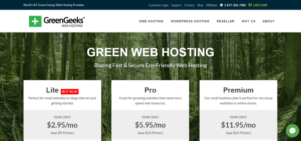 Green Geeks website hosting review and pricing.