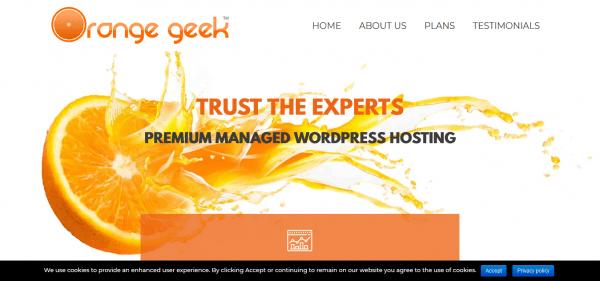Orange Geek website hosting review and pricing.
