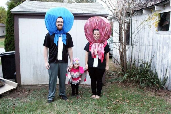 Owl and Tootsie pop family costume