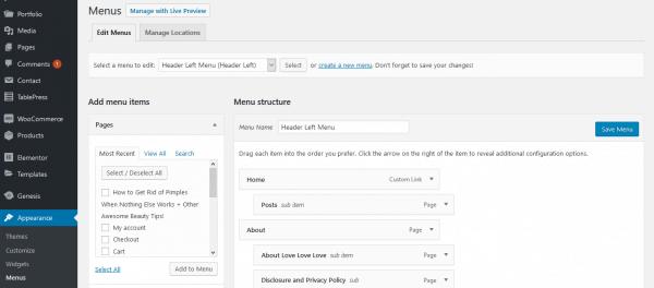 How to access WordPress menus.