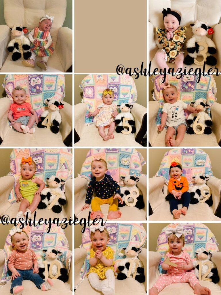 Collage of stuffed animal and wood number monthly baby photos.