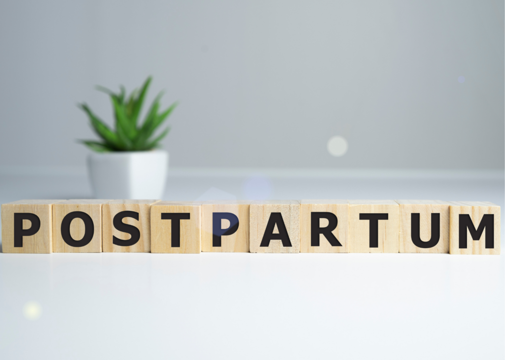 "Wooden blocks spell out ""postpartum"" in front of succulent plant."